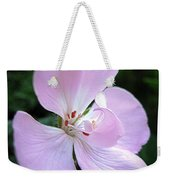 Zonal Geranium Named Tango Light Orchid Weekender Tote Bag