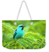 Birds Weekender Tote Bag