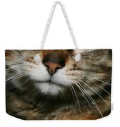 Brown Tabby Weekender Tote Bag