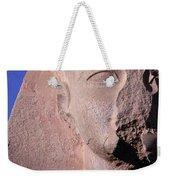 Egypt Weekender Tote Bag