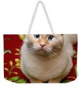 Flame Point Siamese Cat Weekender Tote Bag