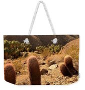 Indian Canyons Weekender Tote Bag