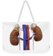 Kidneys And Adrenal Glands Weekender Tote Bag