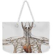 Medical Illustration Of Female Weekender Tote Bag