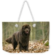 Newfoundland Dog Weekender Tote Bag