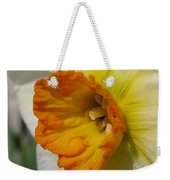Small-cupped Daffodil Named Barrett Browning Weekender Tote Bag