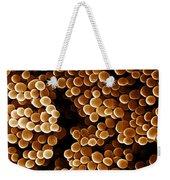 Staphylococcus Aureus, Sem Weekender Tote Bag