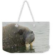 Walrus Weekender Tote Bag