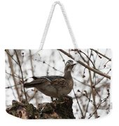 Wood Duck Weekender Tote Bag
