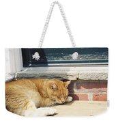 #665 03 Catnap  Weekender Tote Bag