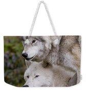 Arctic Wolves Weekender Tote Bag