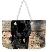 Black Labrador Retriever Weekender Tote Bag by Linda Freshwaters Arndt