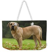 Canary Dog Weekender Tote Bag