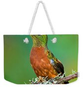 Chestnut-breasted Coronet Weekender Tote Bag