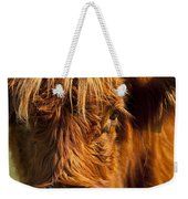 Highland Cow Weekender Tote Bag by Brian Jannsen