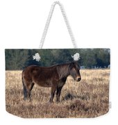 New Forest Pony Weekender Tote Bag