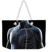 The Nerves Of The Upper Body Weekender Tote Bag