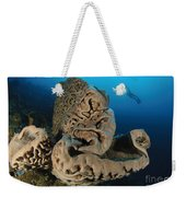 The Salvador Dali Sponge With Intricate Weekender Tote Bag