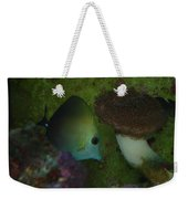 Tropical Fish And Coral Weekender Tote Bag