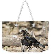Bronzed Cowbird Weekender Tote Bag