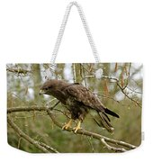 Buse Variable Buteo Buteo Weekender Tote Bag