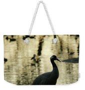 Common Cranes At Gallocanta Lagoon Weekender Tote Bag