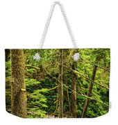 Path In Temperate Rainforest Weekender Tote Bag by Elena Elisseeva