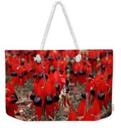 Sturt's Desert Pea Outback South Australia Weekender Tote Bag