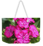 Sweet William From The Super Duplex Bluepoint Mix Weekender Tote Bag