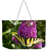 Yellow Tiger Swallowtail Papilio Glaucus Butterfly  Weekender Tote Bag