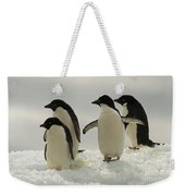 Adelie Penguins Weekender Tote Bag