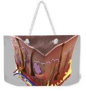 Anatomy Of Human Skin Weekender Tote Bag