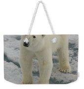 Polar Bear Crossing Ice Floe Weekender Tote Bag