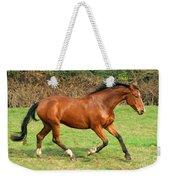 The Bay Horse Weekender Tote Bag