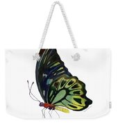 97 Perched Kuranda Butterfly Weekender Tote Bag by Amy Kirkpatrick