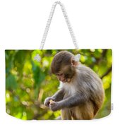 A Baby Macaque Eating An Orange Weekender Tote Bag