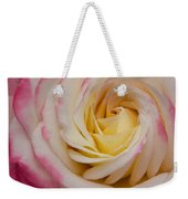 A Beautiful Pink Rose In Summertime Weekender Tote Bag
