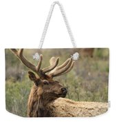 A Beautiful Young Rack Weekender Tote Bag