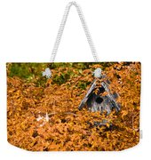 A Bird House Sits Empty In Fall Weekender Tote Bag