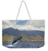 A Breaching Humpback Whale  Megaptera Weekender Tote Bag