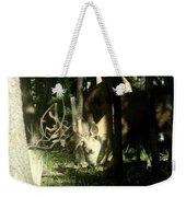 A Buck Deer Grazes Weekender Tote Bag
