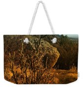 A Cactus In The Sandia Mountains Weekender Tote Bag
