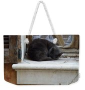 A Circled Up Cat  Weekender Tote Bag by Lainie Wrightson