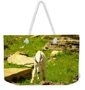 A Goat Coming Down The Trail Weekender Tote Bag