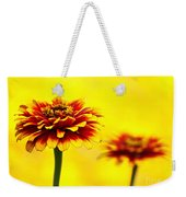 A Colorful Pair Weekender Tote Bag
