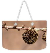 A Conifer Cone On A Tree Branch Weekender Tote Bag