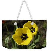 A Couple Of Bright Yellow Tulip Flowers Weekender Tote Bag