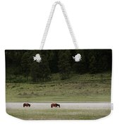 A Couple Of Horses Standing Weekender Tote Bag