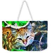 A Curious Cat Weekender Tote Bag