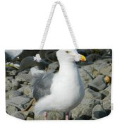A Curious Seagull Weekender Tote Bag